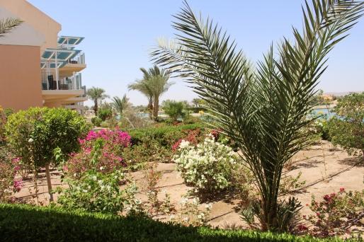 Mövenpick Garten